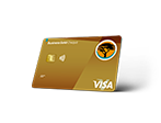 FNB Gold Business Account card